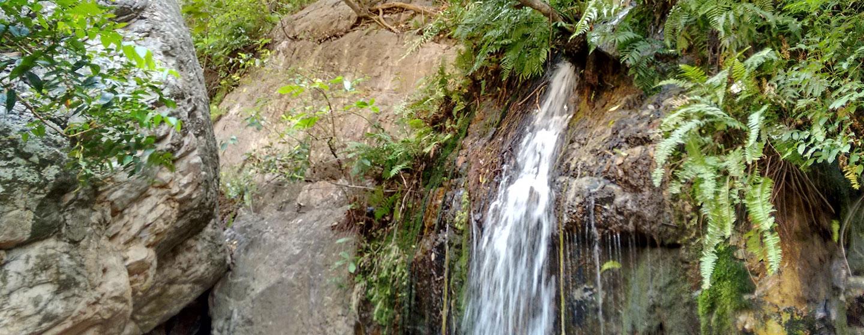 Ride to Zenith Falls