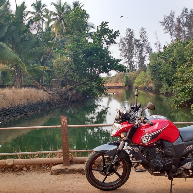 Kankavli
