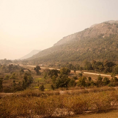 Bhander Range Forest