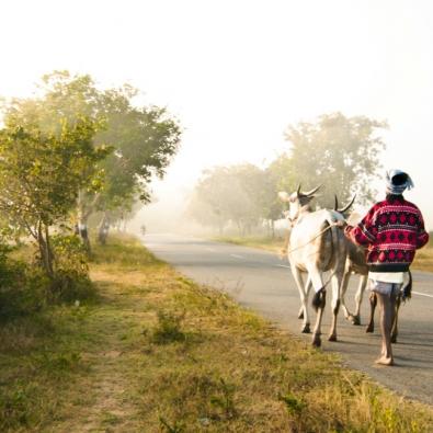 Shegaon, Bk